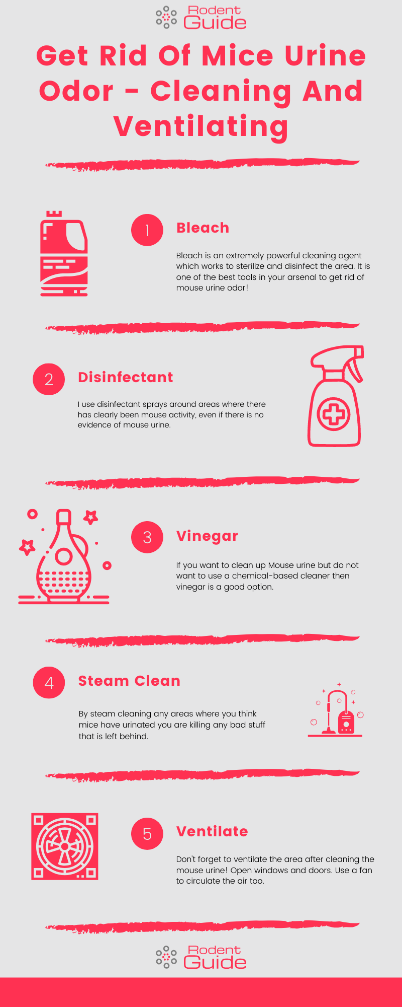 Get Rid Of Mice Urine Odor - Cleaning And Ventilating Infographic