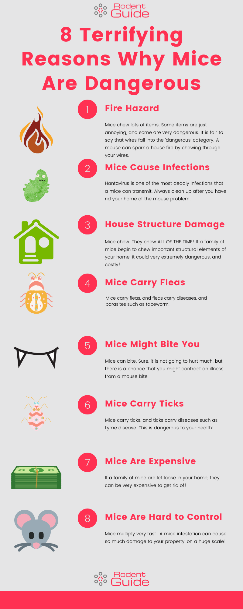 8 Terrifying Reasons Why Mice Are Dangerous Infographic