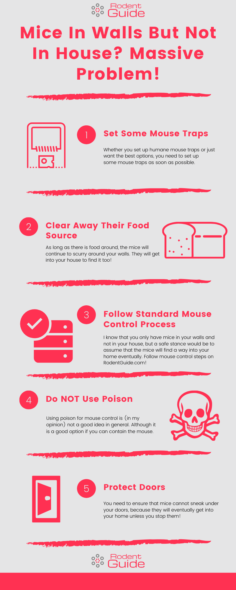 Mice In Walls But Not In House_ Massive Problem! Infographic