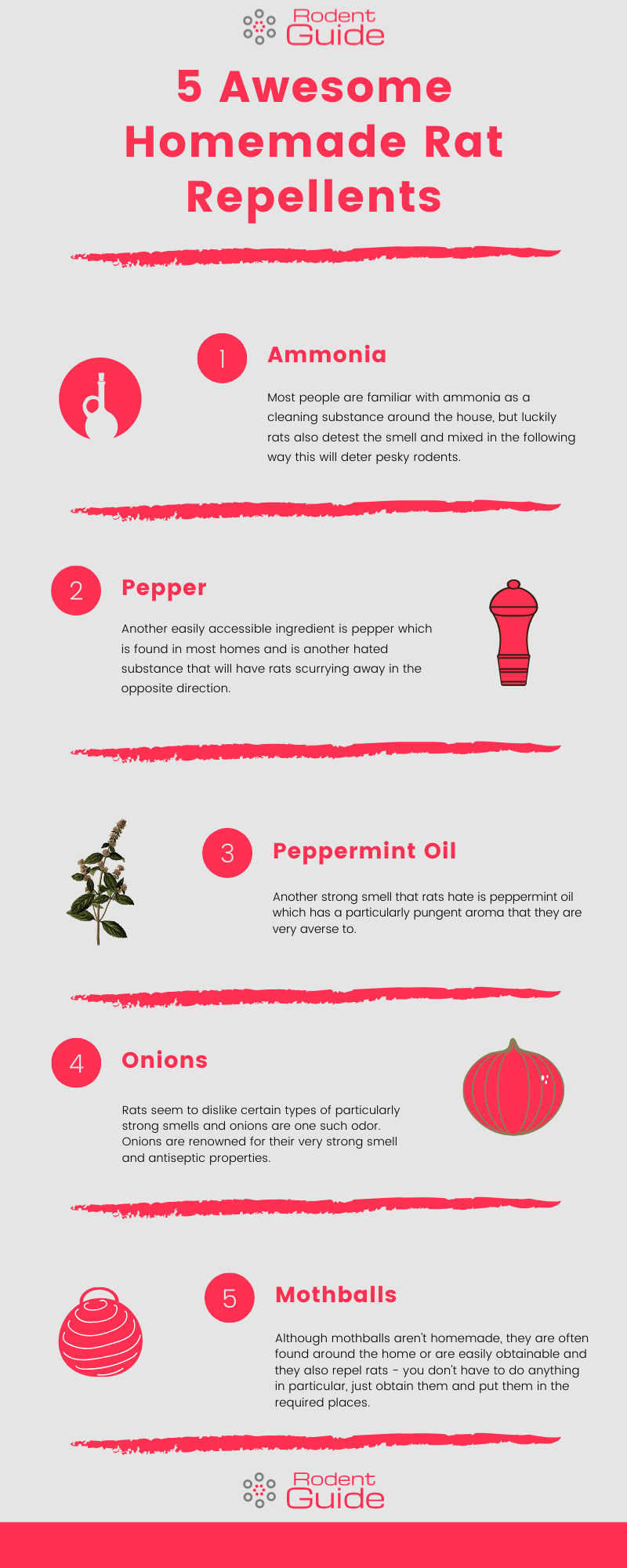 5 Awesome Homemade Rat Repellents Infographic