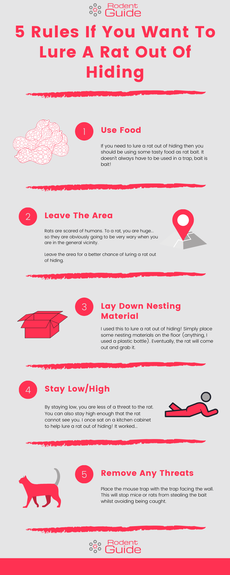 5 Rules If You Want To Lure A Rat Out Of Hiding Infographic