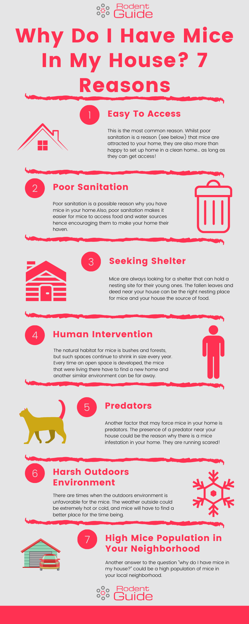 Why Do I Have Mice In My House Infographic 1