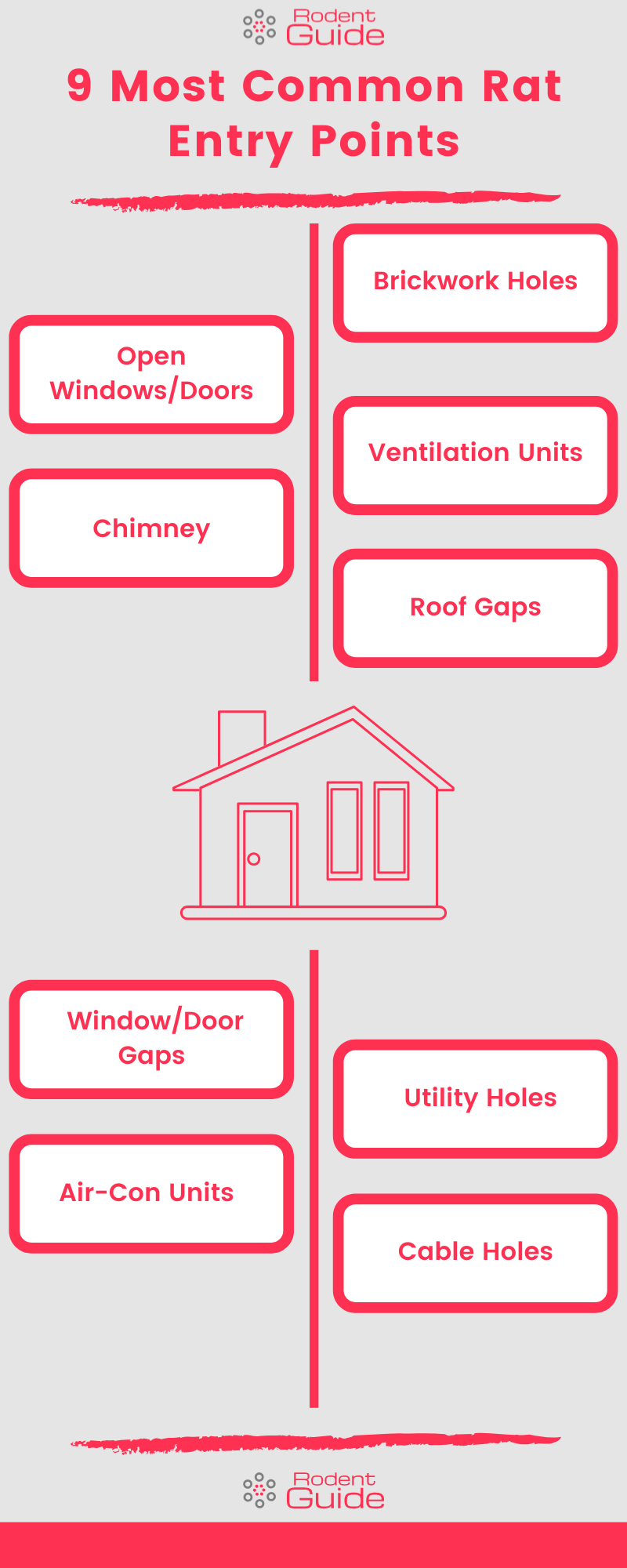 9 Most Common Rat Entry Points Infographic